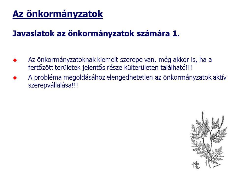Az önkormányzatok Javaslatok az önkormányzatok számára 1.