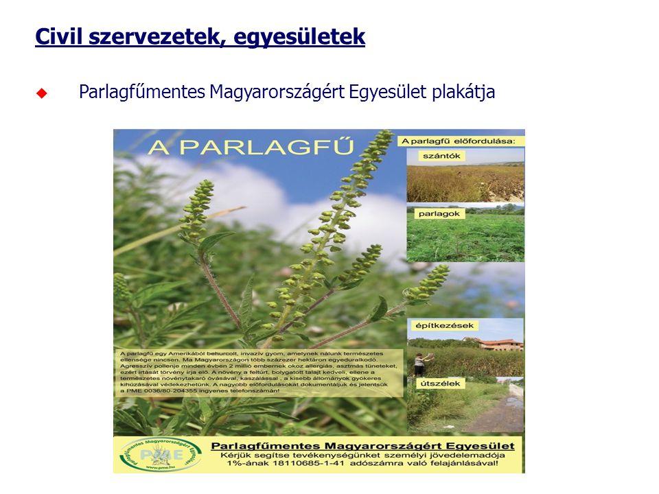 Civil szervezetek, egyesületek  Parlagfűmentes Magyarországért Egyesület plakátja