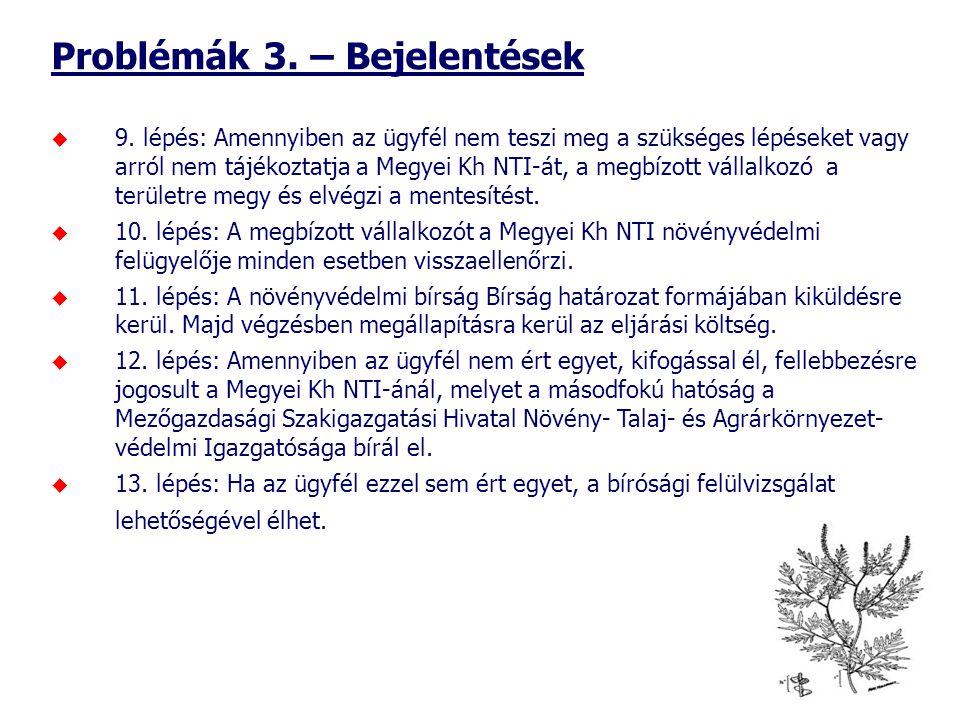 Problémák 3. – Bejelentések  9.