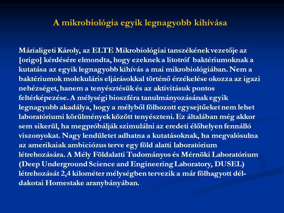 A mikrobiológia egyik legnagyobb kihívása Márialigeti Károly, az ELTE Mikrobiológiai tanszékének vezetője az [origo] kérdésére elmondta, hogy ezeknek
