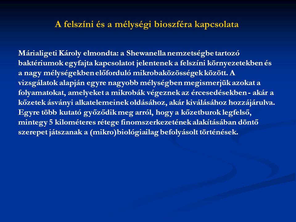 A felszíni és a mélységi bioszféra kapcsolata Márialigeti Károly elmondta: a Shewanella nemzetségbe tartozó baktériumok egyfajta kapcsolatot jelentene