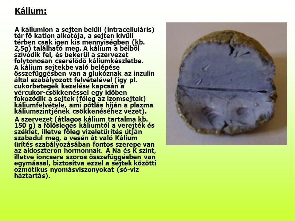 Kálium: A káliumion a sejten belüli (intracelluláris) tér fő kation alkotója, a sejten kívüli térben csak igen kis mennyiségben (kb. 2,5g) található m