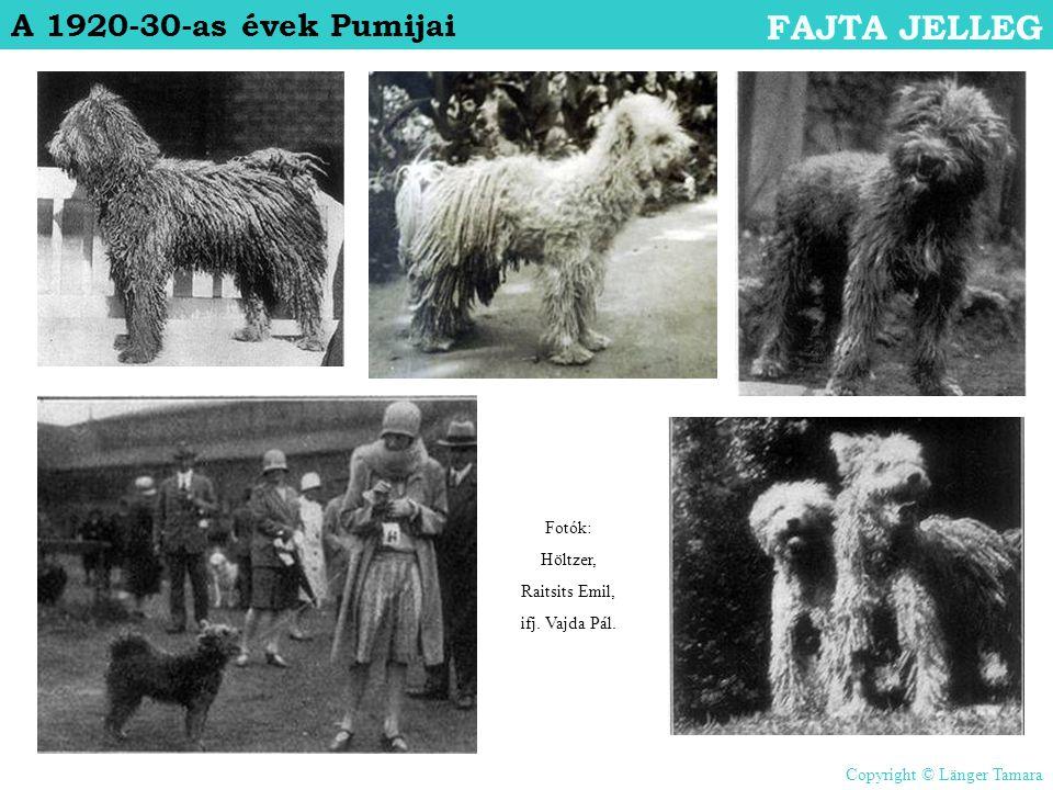 A 1920-30-as évek Pumijai FAJTA JELLEG Fotók: Höltzer, Raitsits Emil, ifj. Vajda Pál. Copyright © Länger Tamara