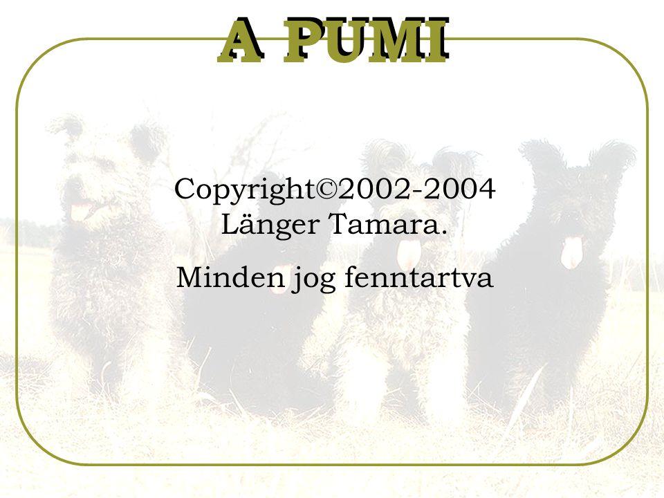 Copyright©2002-2004 Länger Tamara. Minden jog fenntartva A PUMI