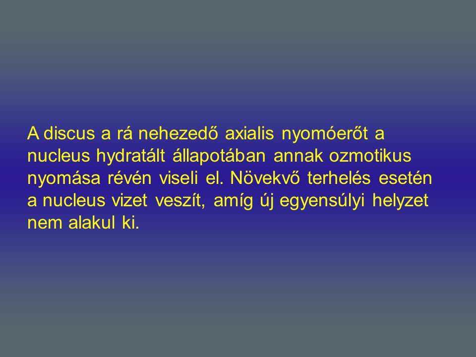 A discus a rá nehezedő axialis nyomóerőt a nucleus hydratált állapotában annak ozmotikus nyomása révén viseli el. Növekvő terhelés esetén a nucleus vi