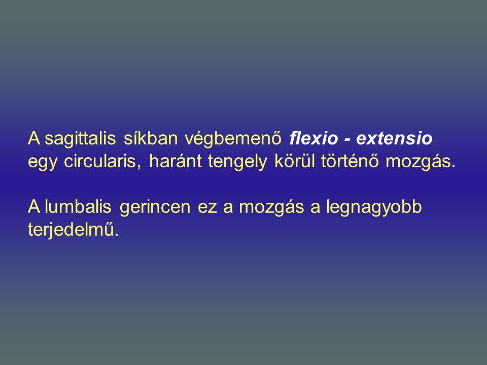 A sagittalis síkban végbemenő flexio - extensio egy circularis, haránt tengely körül történő mozgás. A lumbalis gerincen ez a mozgás a legnagyobb terj