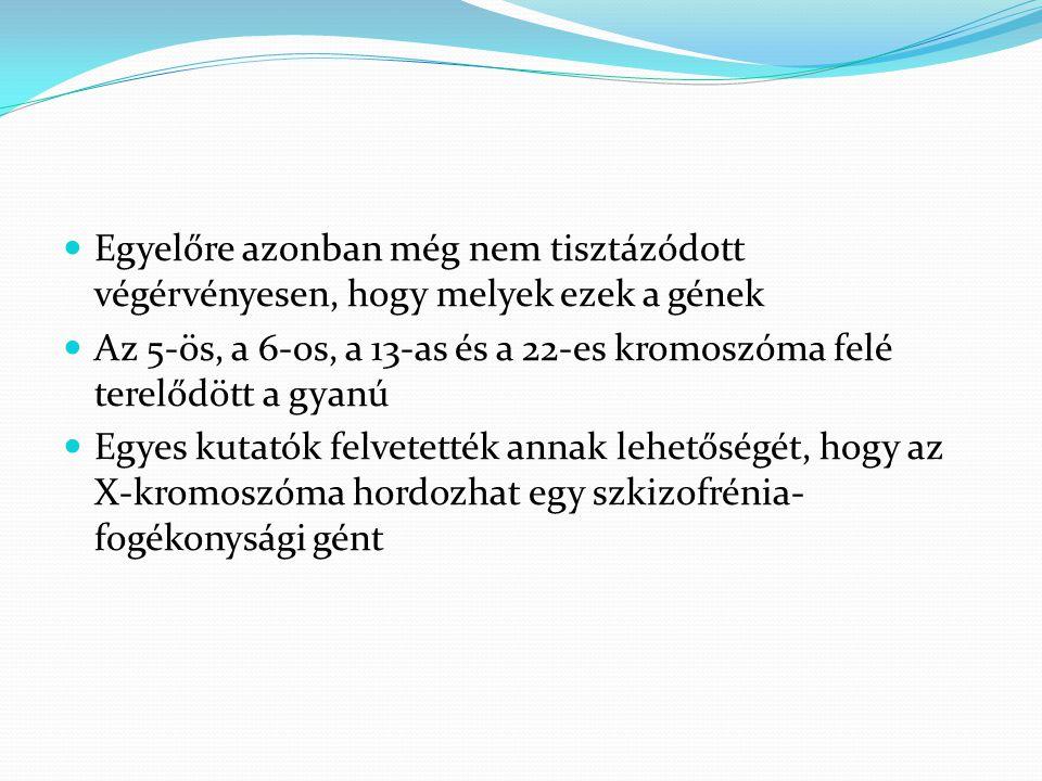 Egyelőre azonban még nem tisztázódott végérvényesen, hogy melyek ezek a gének  Az 5-ös, a 6-os, a 13-as és a 22-es kromoszóma felé terelődött a gya