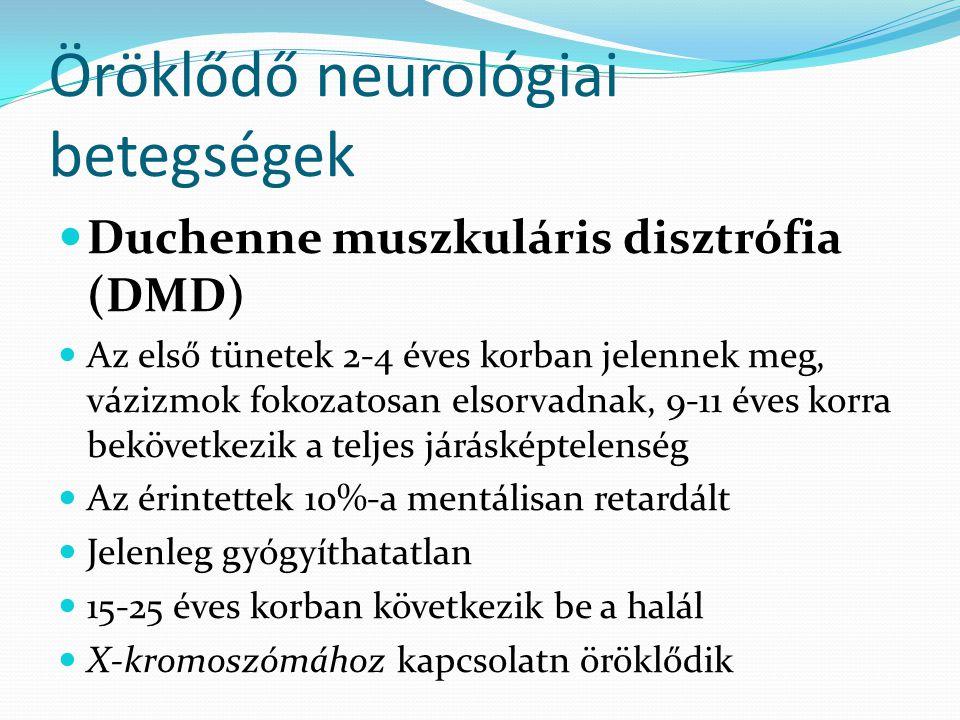 Öröklődő neurológiai betegségek  Duchenne muszkuláris disztrófia (DMD)  Az első tünetek 2-4 éves korban jelennek meg, vázizmok fokozatosan elsorvadn