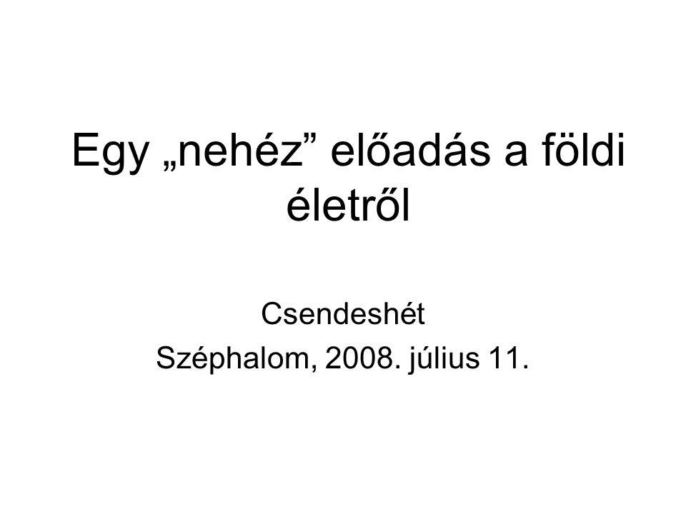 """Egy """"nehéz előadás a földi életről Csendeshét Széphalom, 2008. július 11."""
