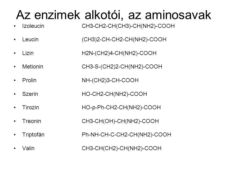Az enzimek alkotói, az aminosavak •IzoleucinCH3-CH2-CH(CH3)-CH(NH2)-COOH •Leucin (CH3)2-CH-CH2-CH(NH2)-COOH •Lizin H2N-(CH2)4-CH(NH2)-COOH •Metionin CH3-S-(CH2)2-CH(NH2)-COOH •Prolin NH-(CH2)3-CH-COOH •Szerin HO-CH2-CH(NH2)-COOH •TirozinHO-p-Ph-CH2-CH(NH2)-COOH •TreoninCH3-CH(OH)-CH(NH2)-COOH •TriptofánPh-NH-CH-C-CH2-CH(NH2)-COOH •ValinCH3-CH(CH2)-CH(NH2)-COOH