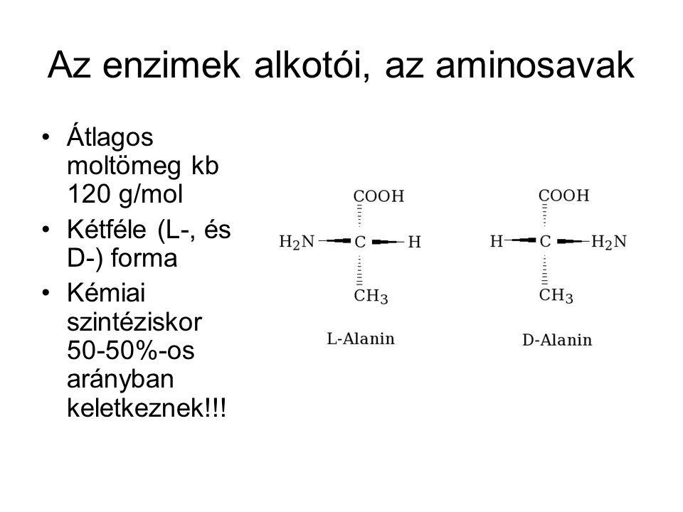 Az enzimek alkotói, az aminosavak •Átlagos moltömeg kb 120 g/mol •Kétféle (L-, és D-) forma •Kémiai szintéziskor 50-50%-os arányban keletkeznek!!!