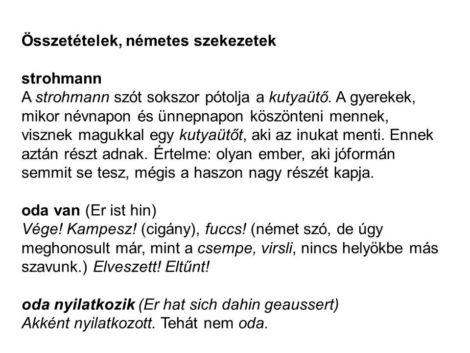 Összetételek, németes szekezetek strohmann A strohmann szót sokszor pótolja a kutyaütő. A gyerekek, mikor névnapon és ünnepnapon köszönteni mennek, vi