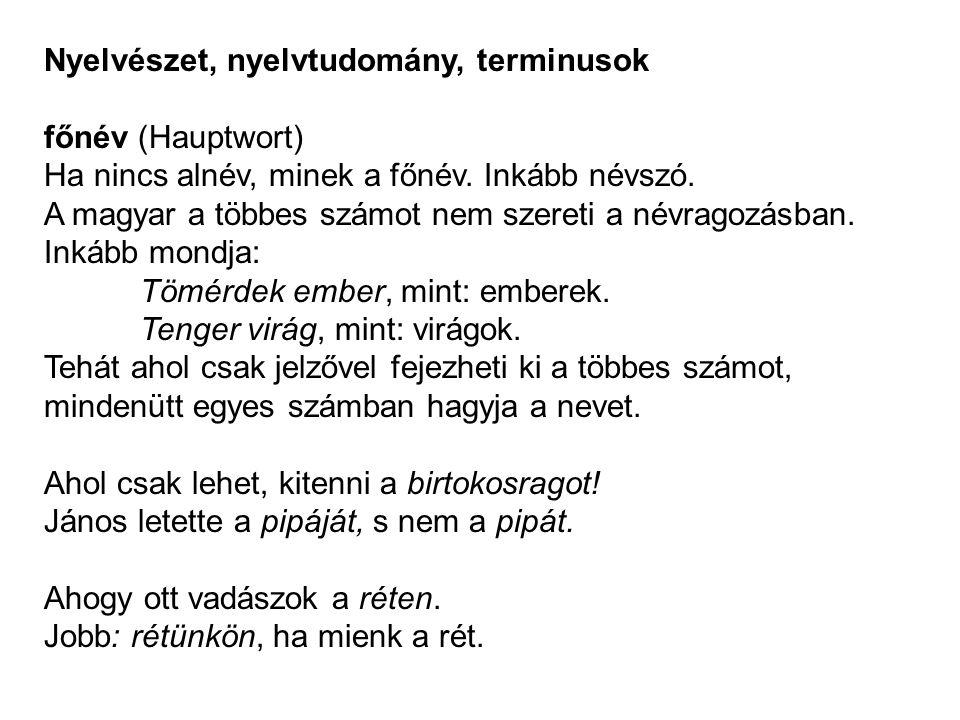 Nyelvészet, nyelvtudomány, terminusok főnév (Hauptwort) Ha nincs alnév, minek a főnév. Inkább névszó. A magyar a többes számot nem szereti a névragozá