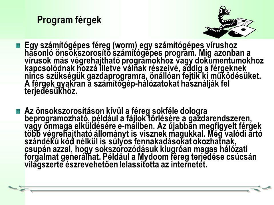 Program férgek Egy számítógépes féreg (worm) egy számítógépes vírushoz hasonló önsokszorosító számítógépes program.