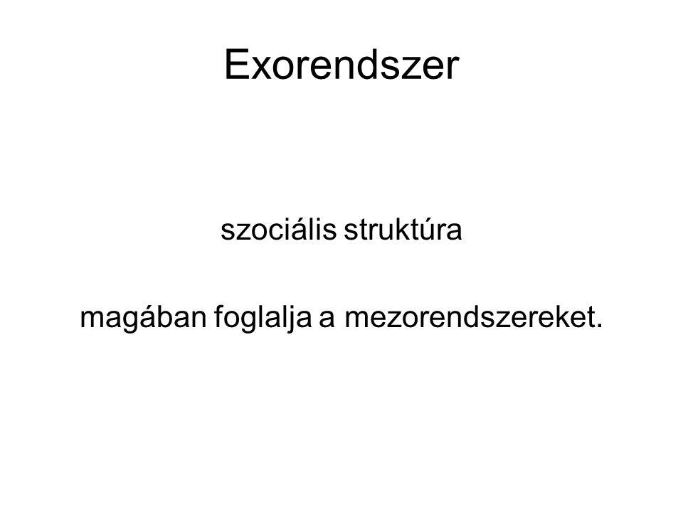 Exorendszer szociális struktúra magában foglalja a mezorendszereket.