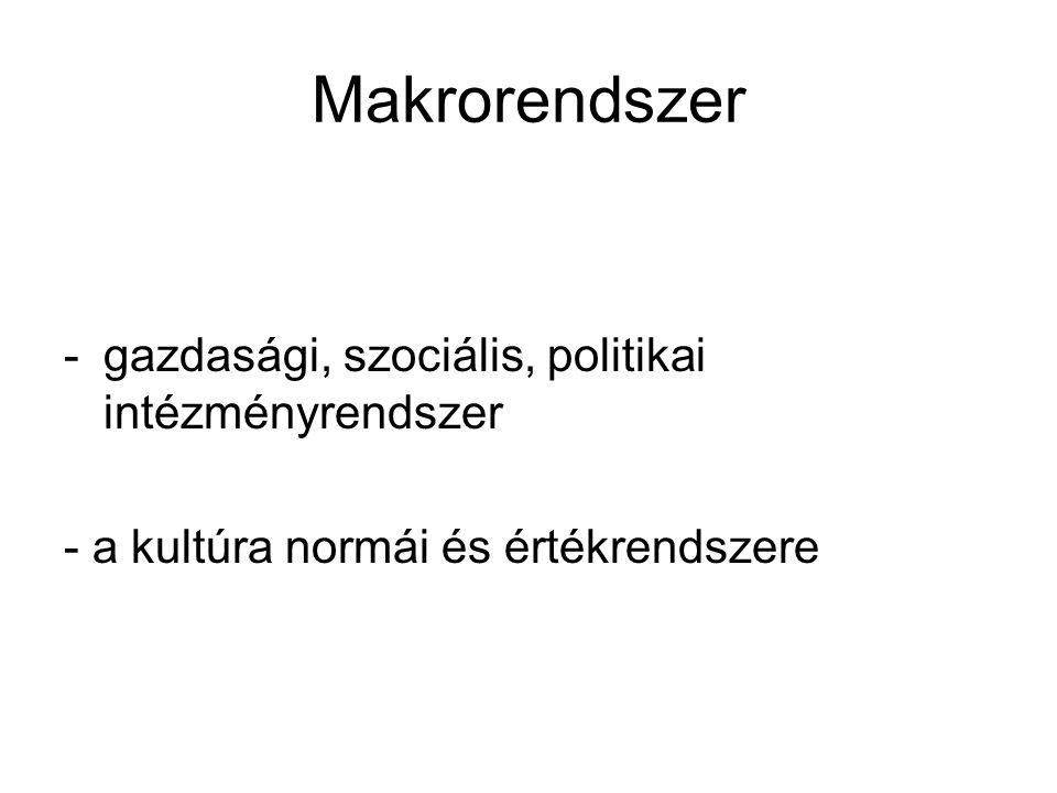 Makrorendszer -gazdasági, szociális, politikai intézményrendszer - a kultúra normái és értékrendszere