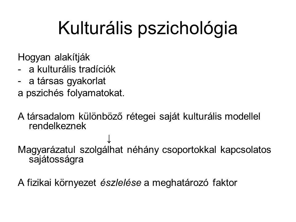 Kulturális pszichológia Hogyan alakítják -a kulturális tradíciók -a társas gyakorlat a pszichés folyamatokat. A társadalom különböző rétegei saját kul