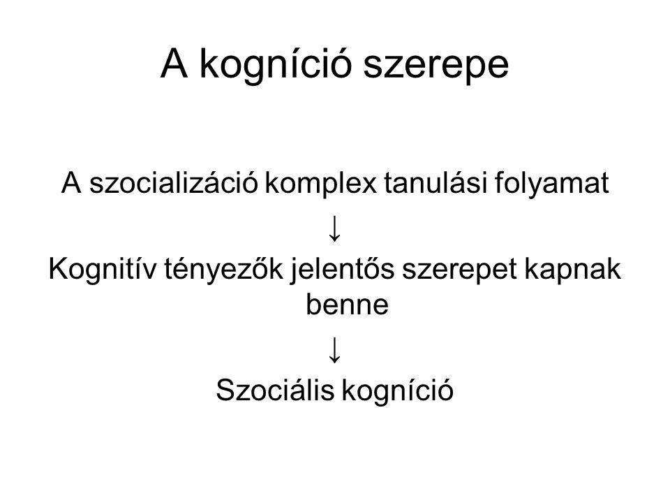 A kogníció szerepe A szocializáció komplex tanulási folyamat ↓ Kognitív tényezők jelentős szerepet kapnak benne ↓ Szociális kogníció
