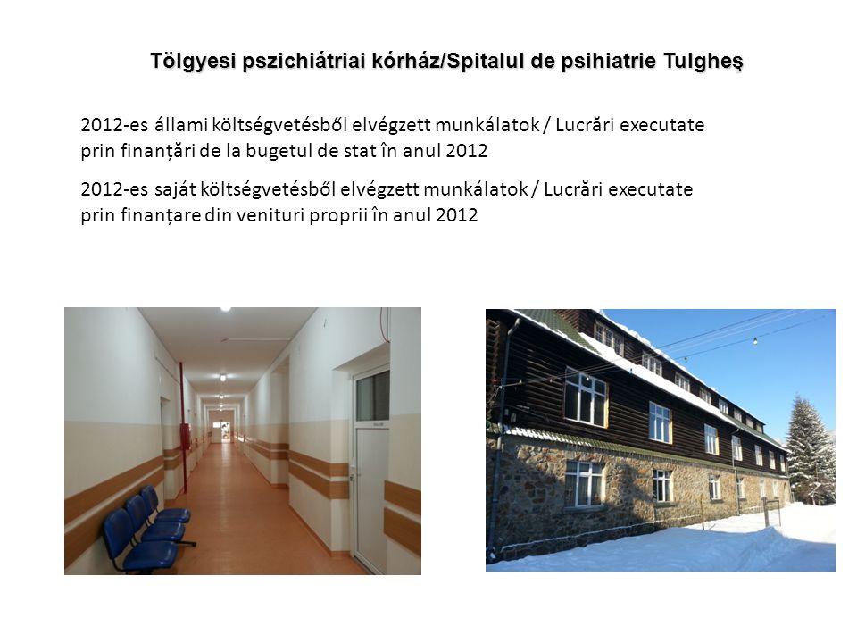 Tölgyesi pszichiátriai kórház/Spitalul de psihiatrie Tulgheş 2012-es állami költségvetésből elvégzett munkálatok / Lucrări executate prin finanțări de