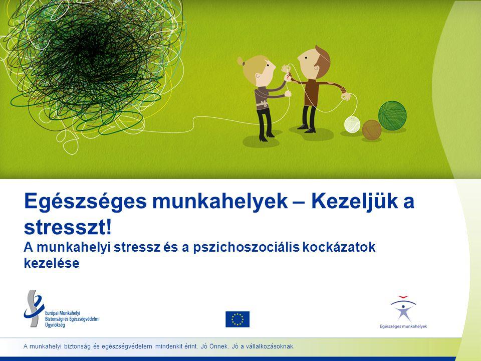 12 www.healthy-workplaces.eu A stressz és a pszichoszociális kockázatok kezelése  A pszichoszociális kockázatok még korlátozott források esetén is hatékonyan értékelhetők és kezelhetők.