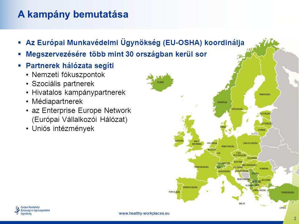 3 www.healthy-workplaces.eu Fő célkitűzések  A munkával kapcsolatos stressz és a pszichoszociális kockázatok jobb megértése  E kockázatok kezelésének előmozdítása  A jelentős negatív hatások megelőzése  Támogatás és iránymutatás a munkavállalók és munkáltatók számára  Praktikus és felhasználóbarát eszközök alkalmazásának ösztönzése