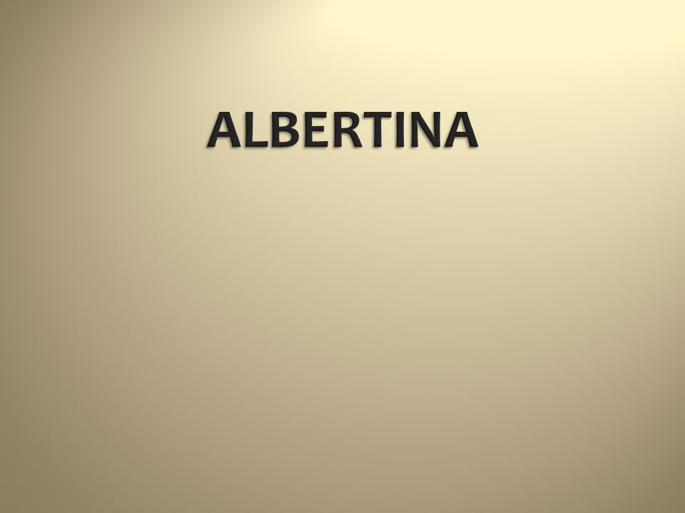 Bécs városközpontjában található az Albrecht főherceg palotájában berendezett Albertina múzeum.