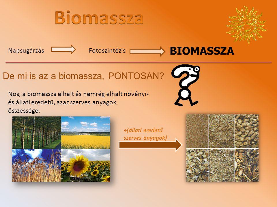 BIOMASSZA NapsugárzásFotoszintézis De mi is az a biomassza, PONTOSAN.