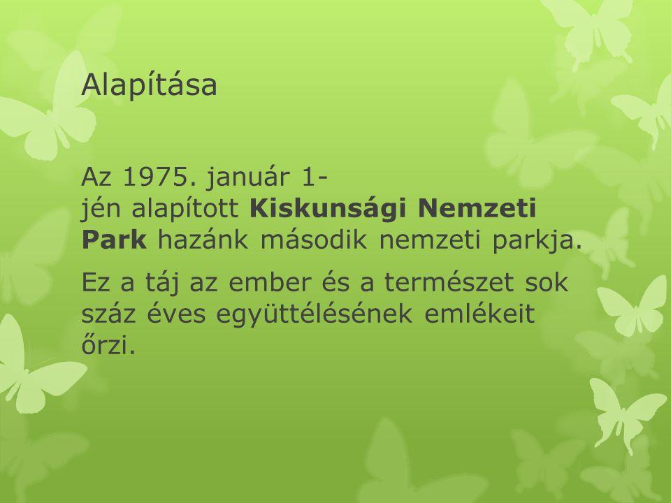 Alapítása Az 1975.január 1- jén alapított Kiskunsági Nemzeti Park hazánk második nemzeti parkja.