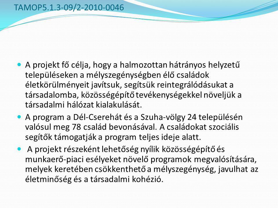 TAMOP5.1.3-09/2-2010-0046  A projekt fő célja, hogy a halmozottan hátrányos helyzetű településeken a mélyszegénységben élő családok életkörülményeit javítsuk, segítsük reintegrálódásukat a társadalomba, közösségépítő tevékenységekkel növeljük a társadalmi hálózat kialakulását.