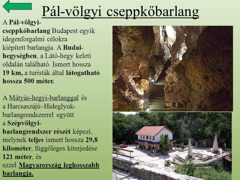Pál-völgyi cseppkőbarlang A Pál-völgyi- cseppkőbarlang Budapest egyik idegenforgalmi célokra kiépített barlangja. A Budai- hegységben, a Látó-hegy kel