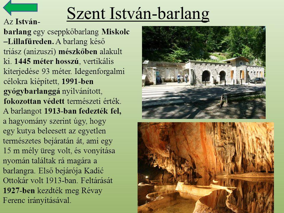 Szent István-barlang Az István- barlang egy cseppkőbarlang Miskolc –Lillafüreden. A barlang késő triász (anizuszi) mészkőben alakult ki. 1445 méter ho