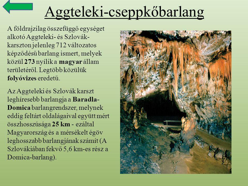 Aggteleki-cseppkőbarlang A földrajzilag összefüggő egységet alkotó Aggteleki- és Szlovák- karszton jelenleg 712 változatos képződésű barlang ismert, m