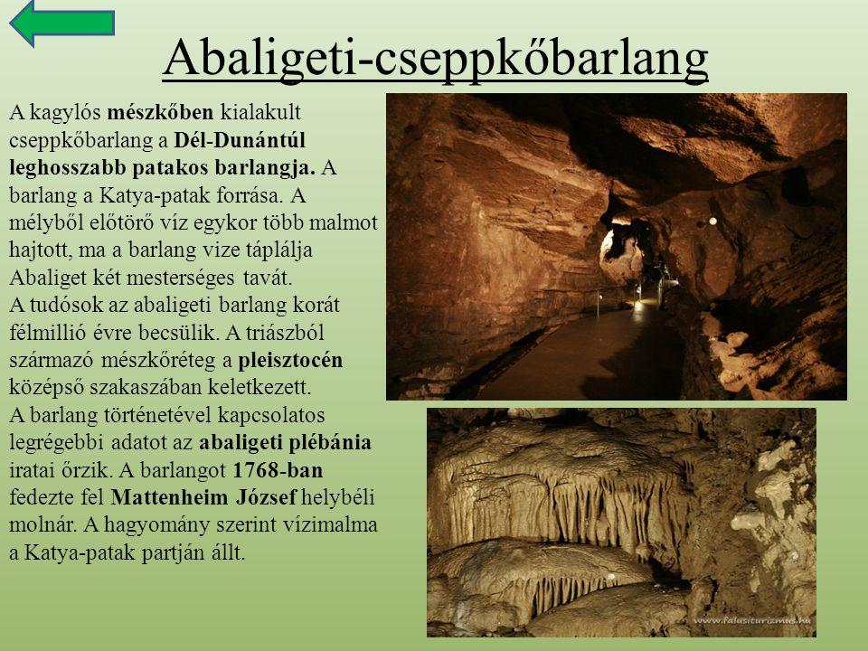 Abaligeti-cseppkőbarlang A kagylós mészkőben kialakult cseppkőbarlang a Dél-Dunántúl leghosszabb patakos barlangja. A barlang a Katya-patak forrása. A