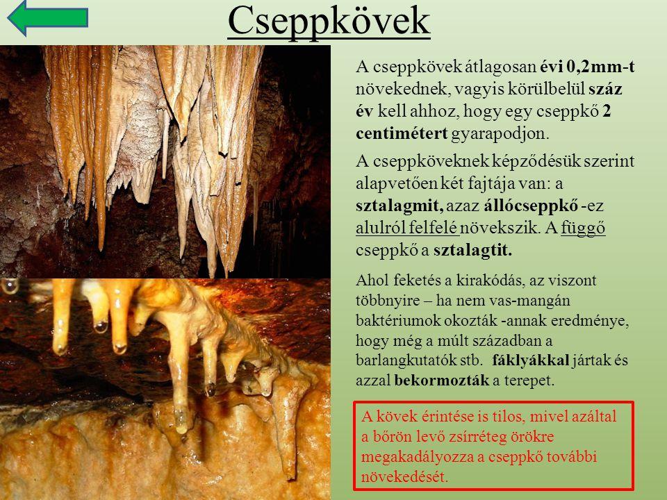 Cseppkövek A cseppkövek átlagosan évi 0,2mm-t növekednek, vagyis körülbelül száz év kell ahhoz, hogy egy cseppkő 2 centimétert gyarapodjon. A cseppköv