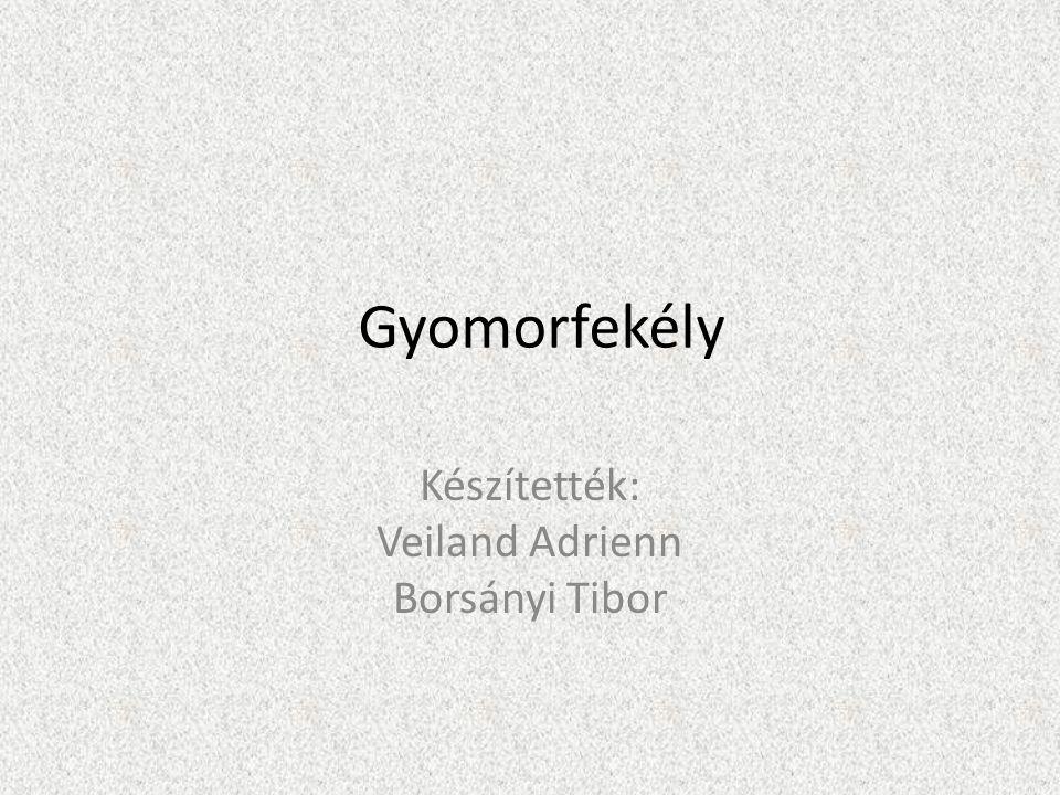 Gyomorfekély Készítették: Veiland Adrienn Borsányi Tibor