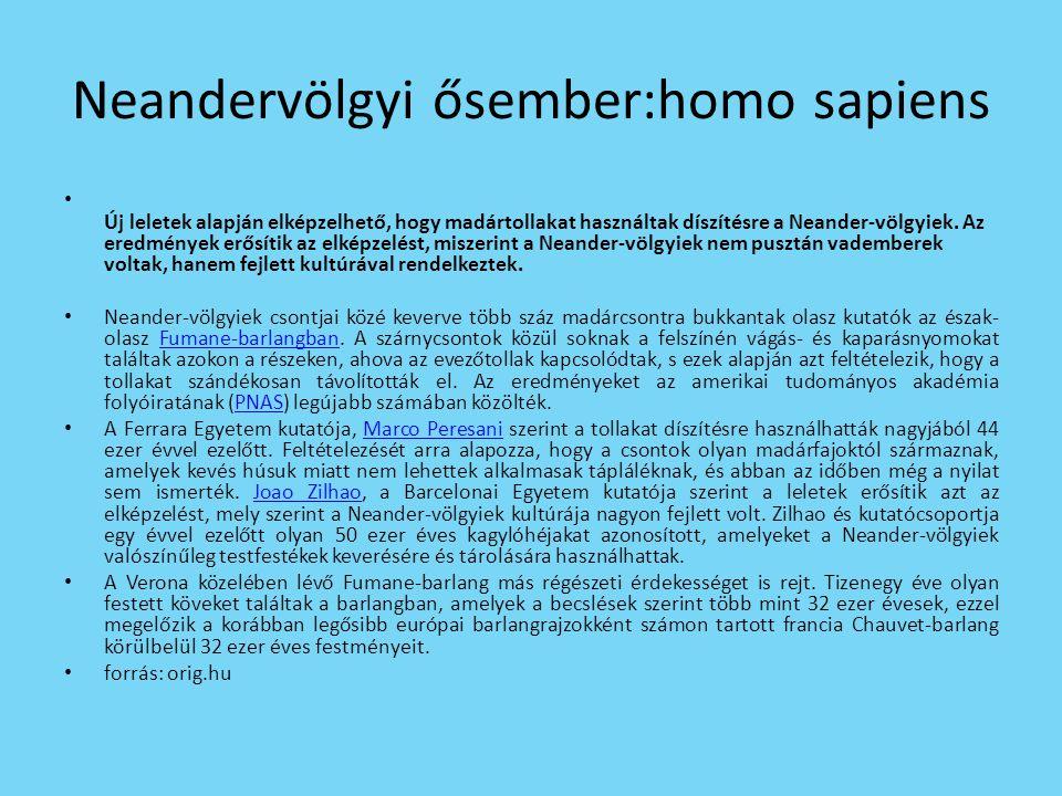 Neandervölgyi ősember:homo sapiens • Új leletek alapján elképzelhető, hogy madártollakat használtak díszítésre a Neander-völgyiek.