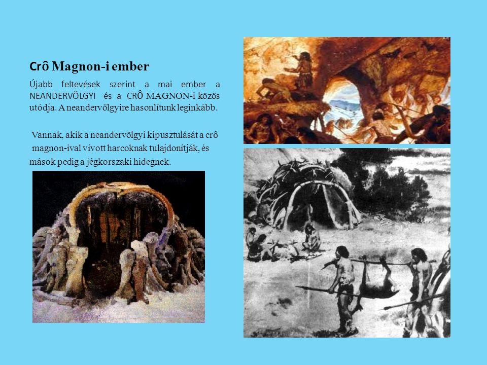 Cr ȏ Magnon-i ember Újabb feltevések szerint a mai ember a NEANDERVÖLGYI és a CR Ȏ MAGNON-i közös utódja. A neandervölgyire hasonlítunk leginkább. Van