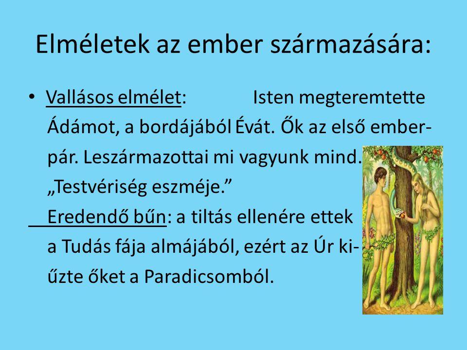 Elméletek az ember származására: • Vallásos elmélet: Isten megteremtette Ádámot, a bordájából Évát. Ők az első ember- pár. Leszármazottai mi vagyunk m