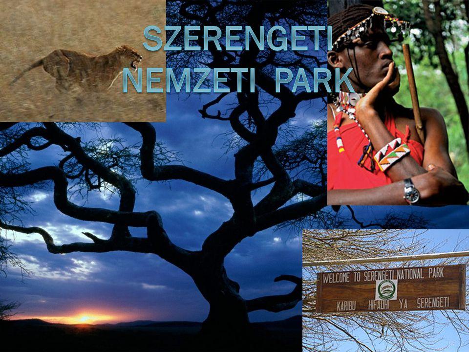  A Serengeti egy kopár szavanna,amely Tanzánia északi részén, a Viktória-tótól keletre fekszik egy körülbelül 30 000 km²- es síkságon, a Kenya déli határáig terjed.