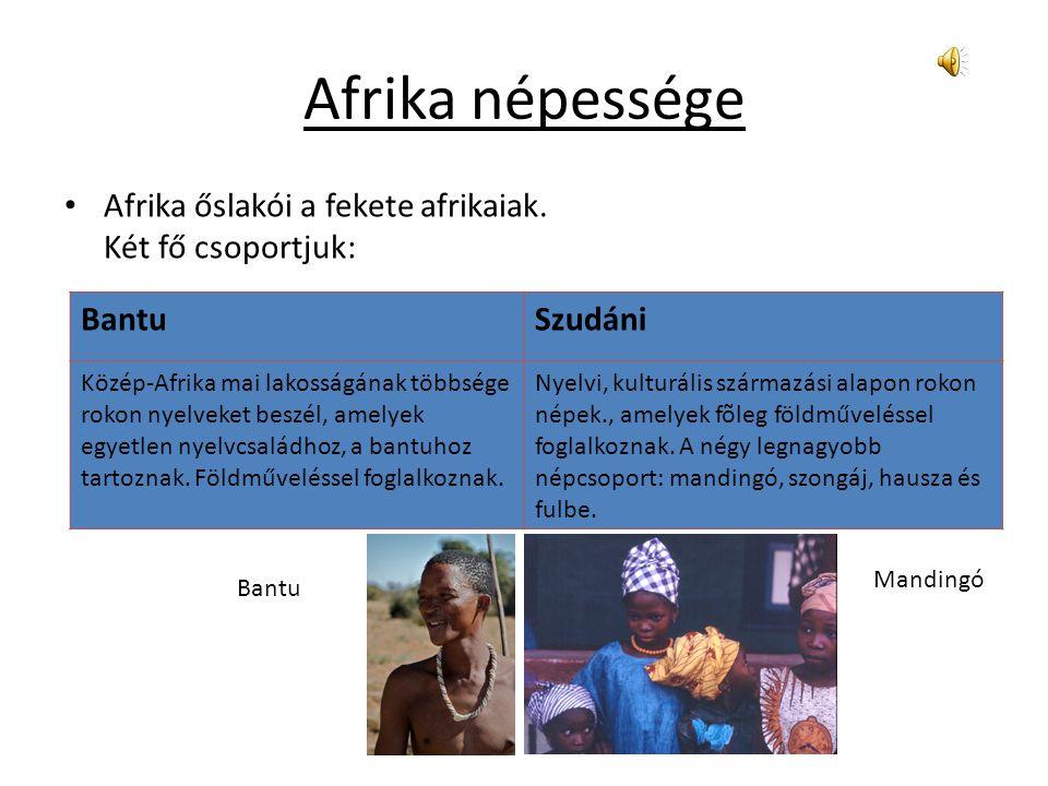 """Afrika,a """"fiatal"""" kontinens Készítette:Farkas Fanni"""