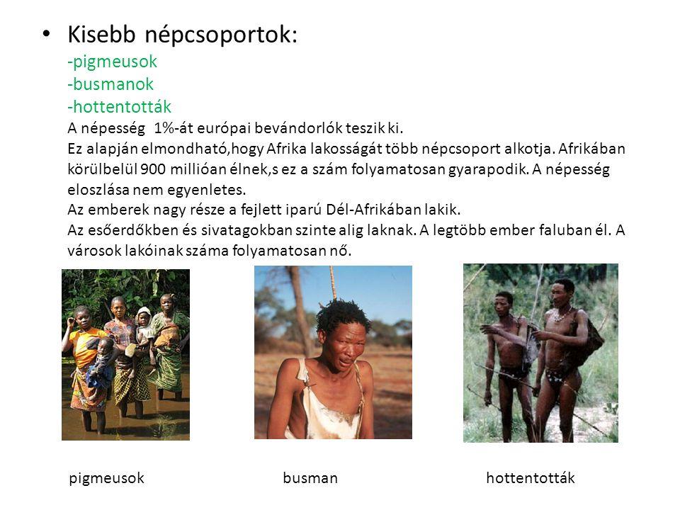 Afrika népessége • Afrika őslakói a fekete afrikaiak. Két fő csoportjuk: BantuSzudáni Közép-Afrika mai lakosságának többsége rokon nyelveket beszél, a