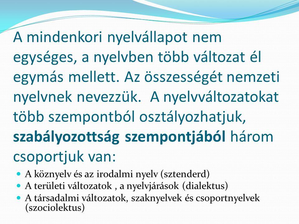 A mindenkori nyelvállapot nem egységes, a nyelvben több változat él egymás mellett. Az összességét nemzeti nyelvnek nevezzük. A nyelvváltozatokat több