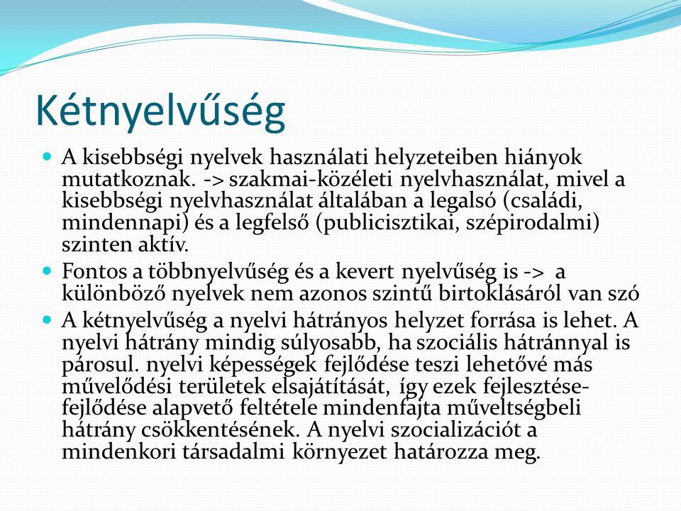 Kétnyelvűség  A kisebbségi nyelvek használati helyzeteiben hiányok mutatkoznak. -> szakmai-közéleti nyelvhasználat, mivel a kisebbségi nyelvhasználat