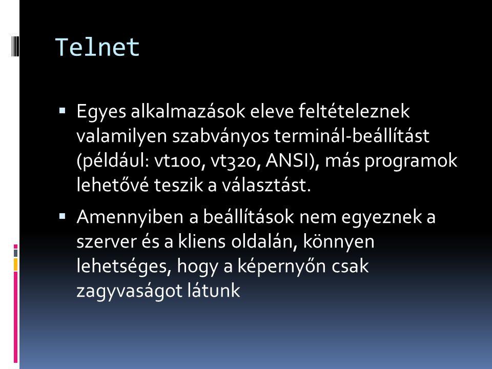 Telnet  Egyes alkalmazások eleve feltételeznek valamilyen szabványos terminál-beállítást (például: vt100, vt320, ANSI), más programok lehetővé teszik