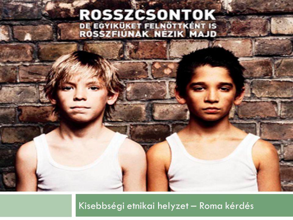 Kisebbségi etnikai helyzet – Roma kérdés