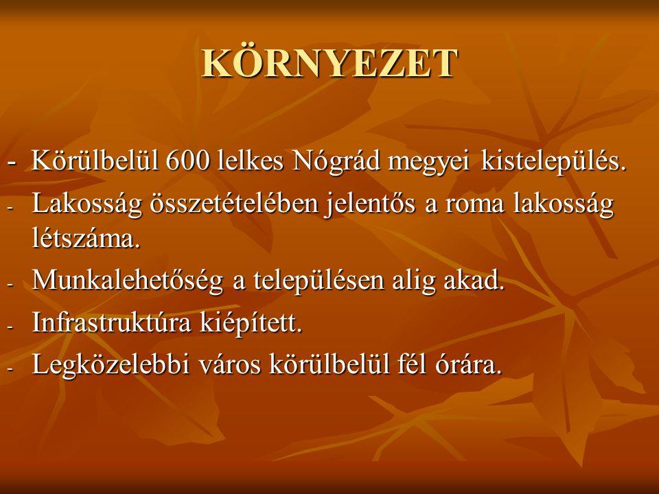 KÖRNYEZET - Körülbelül 600 lelkes Nógrád megyei kistelepülés. - Lakosság összetételében jelentős a roma lakosság létszáma. - Munkalehetőség a települé