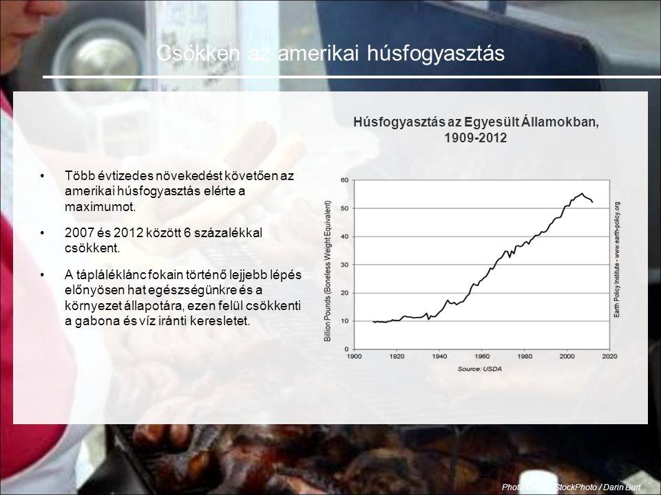 22 •Több évtizedes növekedést követően az amerikai húsfogyasztás elérte a maximumot.