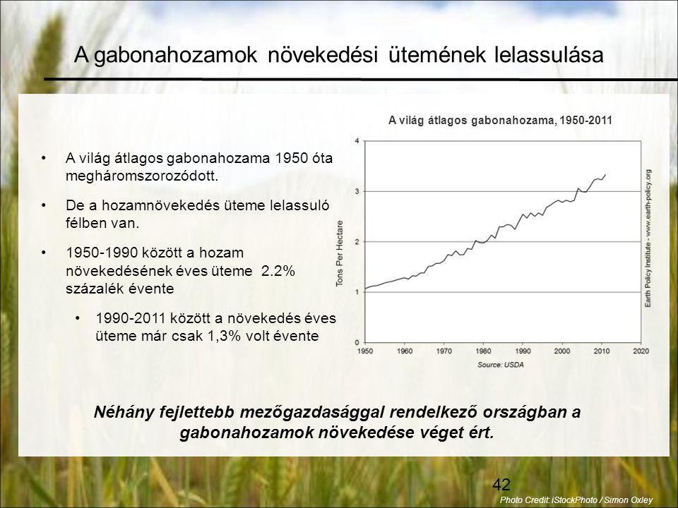 42 •A világ átlagos gabonahozama 1950 óta megháromszorozódott.