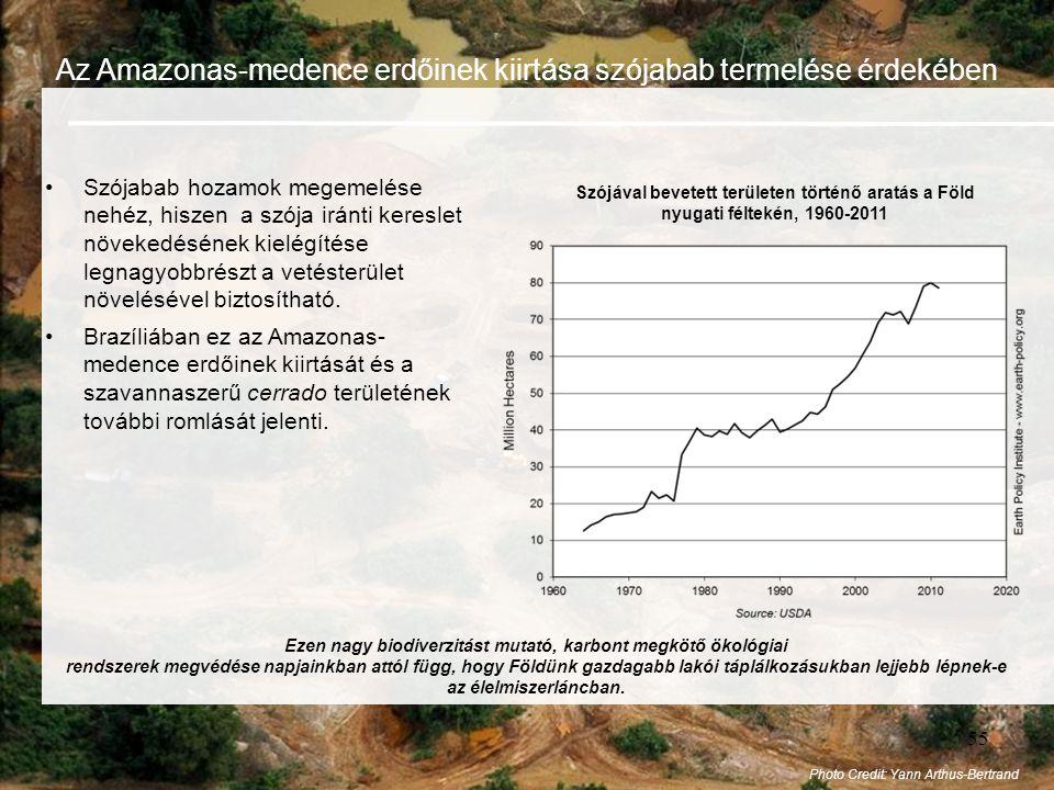 55 Az Amazonas-medence erdőinek kiirtása szójabab termelése érdekében •Szójabab hozamok megemelése nehéz, hiszen a szója iránti kereslet növekedésének kielégítése legnagyobbrészt a vetésterület növelésével biztosítható.