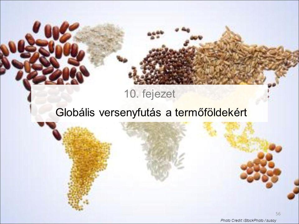 56 10. fejezet Globális versenyfutás a termőföldekért Photo Credit: iStockPhoto / susoy